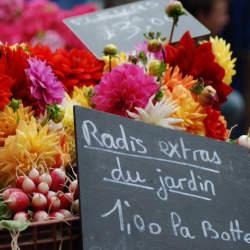 【送別会の花選び】送別会のときに覚えておきたい花選びのポイント