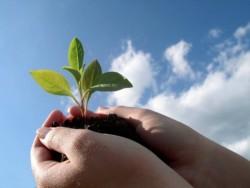 「組織設立の3要素」から見る個人と組織の関係性