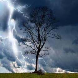 台風の場合って出勤すべき?台風時の出勤判断を前日までに行っておく方法