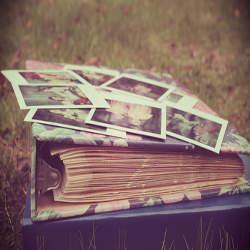 きれいな言葉は信用を生む!美しい言葉遣いを学ぶ為の本まとめ