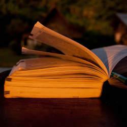 読みたい部分だけカンタン購入。忙しくて本を読めない人にピッタリの電子書籍サイト「パピレスプラス」