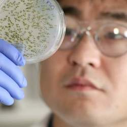 特許フリーの治療薬が開発中? 低価格、低リスクの治療薬でがん治療のあり方が変わる