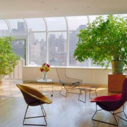 実用性とデザイン性を兼ね備えたインテリアとしての椅子。定番デザイナーズチェアの魅力
