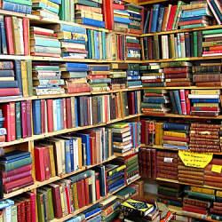 新書を読むには、本より先に本棚を買え! 最強の書評ブロガーが教える読書術『新書がベスト』