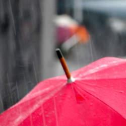 憂鬱な雨の日がちょっと待ち遠しくなる。個性的だけど機能性も忘れない「折りたたみ傘」3選