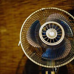 夏の買い替え、その前に。意外と知らない「サーキュレーター」と「扇風機」の違いとは