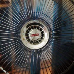 その良さは◯◯にあった。高級な扇風機と安価な扇風機、違いはどこ?