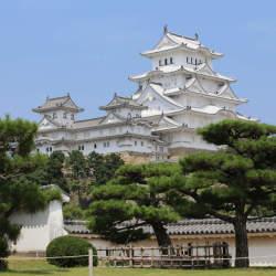 「姫路城」の入場料はなぜ日本一高い? リニューアルした兵庫のシンボル、その強気なビジネス戦略とは