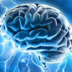 2045年、人工知能が人間を超える――。AI時代に君はどう生きる?:『人工知能に負けない脳』