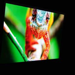 おすすめの4Kテレビ4選:今までにない感動をもたらすのはコスパが高い4Kテレビ
