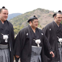 なぜ大相撲に外国人力士が生まれ、増え続けているのか? 大相撲が孕む「外国人力士を巡る大きな矛盾」