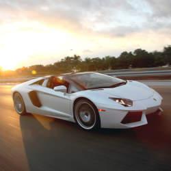 男子の憧れ! 5台の刺激的な外車「スポーツカー」:乗らずとも眺めるだけで得られる高揚を体感せよ