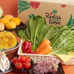 らでぃっしゅぼーや社長・国枝俊成の「野菜宅配ビジネス」新戦略:ドコモと有機野菜のシナジーとは?