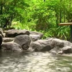 """翌週に疲れをもちこさない:都内の""""天然温泉""""で一週間をリセット"""