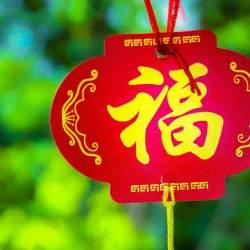 今年もすごかった「春節」:訪日中国人はどんなタイプなのか徹底分析しました!