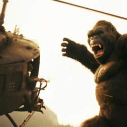 映画「キングコング」の最新作で盛り上がる広背筋と地響き伴う唸り声を視覚と聴覚でとらえよう!!
