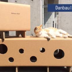 ニャンとも便利な組み立て家具! 強化ダンボールでできた猫まっしぐらな穴あきベンチ&スツール