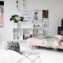 【Houzz】ソファで考える、大人っぽくハイセンスなピンクの使い方