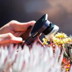 スマホで一眼レベルの写真を撮りたい! 世界最高峰レンズ「Exolens ZEISS」で彩る日常