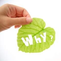 仕事に満足感がないすべての働く人へ。サイモン・シネックから学ぶ「Why」の大切さ