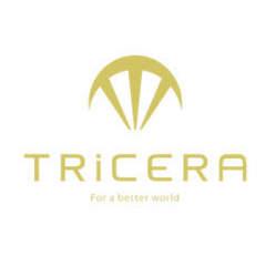 日本のアート業界を盛り上げたい。日本初、アート作品の海外向けECサービス「TRiCERA」誕生
