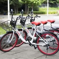 300円で24時間自転車が乗り放題!シェアサイクルサービス「PiPPA」に新料金プラン「デイパス」が登場