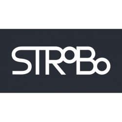 入社と同時に即社長!ストロボが「即日社長制度」により新会社を設立
