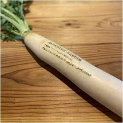 """練馬で350年続く農場で""""食べられるインク""""を活用した「脱プラスチック野菜直売所」実証実験を開始"""