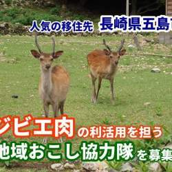 """長崎県五島市、ジビエ肉を活用できる「地域おこし協力隊」を募集中。3大都市圏在住の""""わな猟免許""""保有者が対象"""