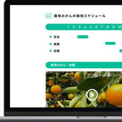 JA蒲郡市、農業技術を動画で受け継ぐ「後継者育成システム」を初導入
