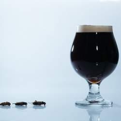 コオロギを原料に使った「コオロギビール」が誕生、クリーミーな口当たりに重厚感ある味わい