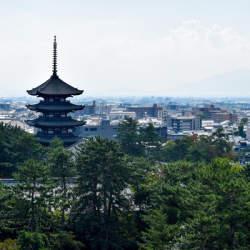 奈良市が企業誘致の新制度をスタート、地域経済の活性化を目指す