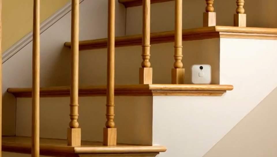もう家に残したペットの心配は不要!どこにでも設置できる小型室内カメラ「Blink」 5番目の画像
