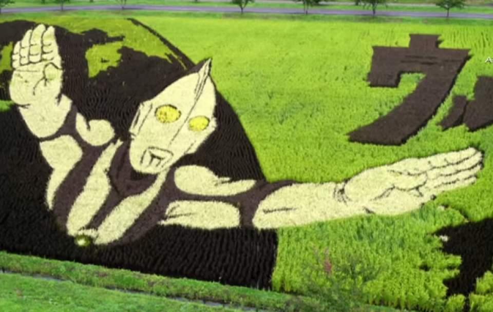 世界初の「お米が買えるポスター」風景を即座に売り場へと変える画期的なアプリ「Rice-Code」 4番目の画像