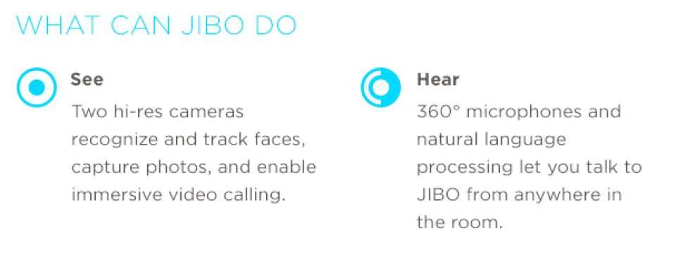 INDIEGOGOで目標額の12倍を調達!高い情緒的能力を持つ世界初の家庭用ロボット「JIBO」 8番目の画像