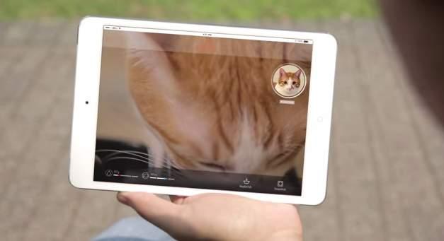 家に残してきた猫、心配じゃありませんか?猫の顔を認識して自動で餌やりする給餌機「Bistro」 7番目の画像