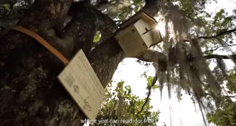 鳥の巣がある木から電子書籍が入手できる!コロンビアの通信会社が仕掛けた「読書率向上」大作戦 4番目の画像