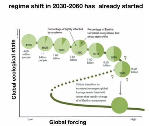 【全文】金融危機は未然に予測し、防止することが可能:経済界を大きく変える「ドラゴンキング理論」 4番目の画像