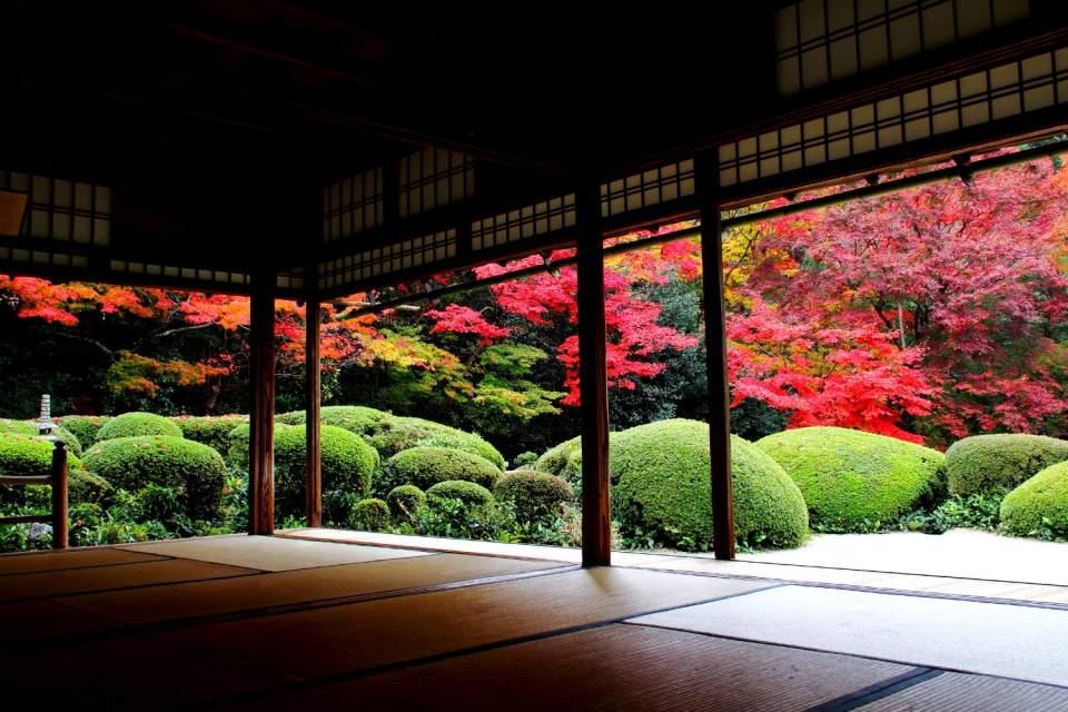 日本の伝統である「畳」の良さを再発見しよう。「畳」が持つ、暮らしをより快適にするメリットまとめ 2番目の画像