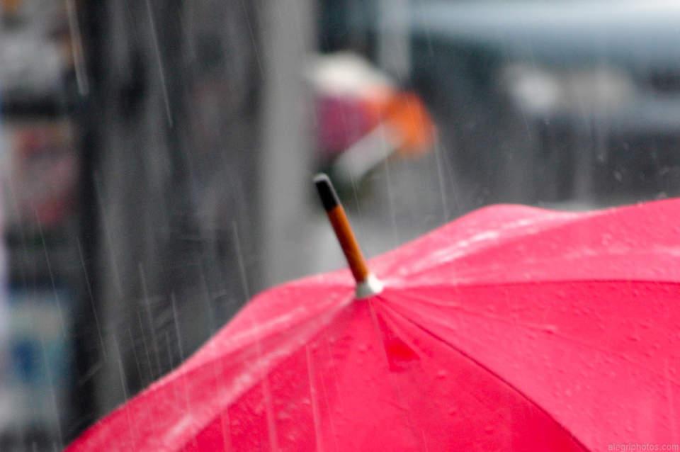 憂鬱な雨の日がちょっと待ち遠しくなる。個性的だけど機能性も忘れない「折りたたみ傘」3選 1番目の画像