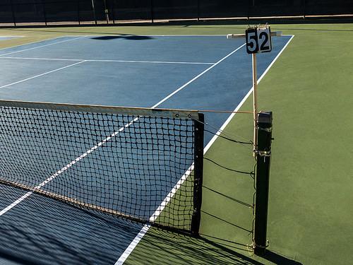 国枝慎吾だけじゃない! 車いすテニスで日本人が最強なワケ 2番目の画像