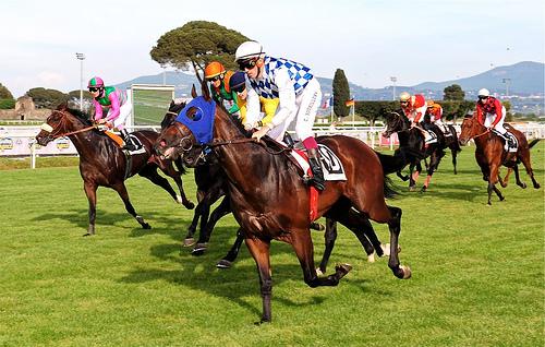 ダービー制覇の競走馬は、馬づくり素人の牧場から生まれた。ゼロからの経営学:『世界一の馬をつくる』 1番目の画像