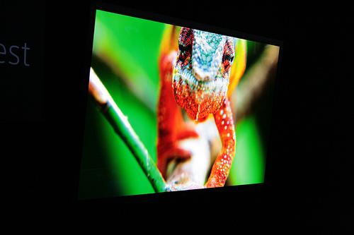 おすすめの4Kテレビ4選:今までにない感動をもたらすのはコスパが高い4Kテレビ 1番目の画像