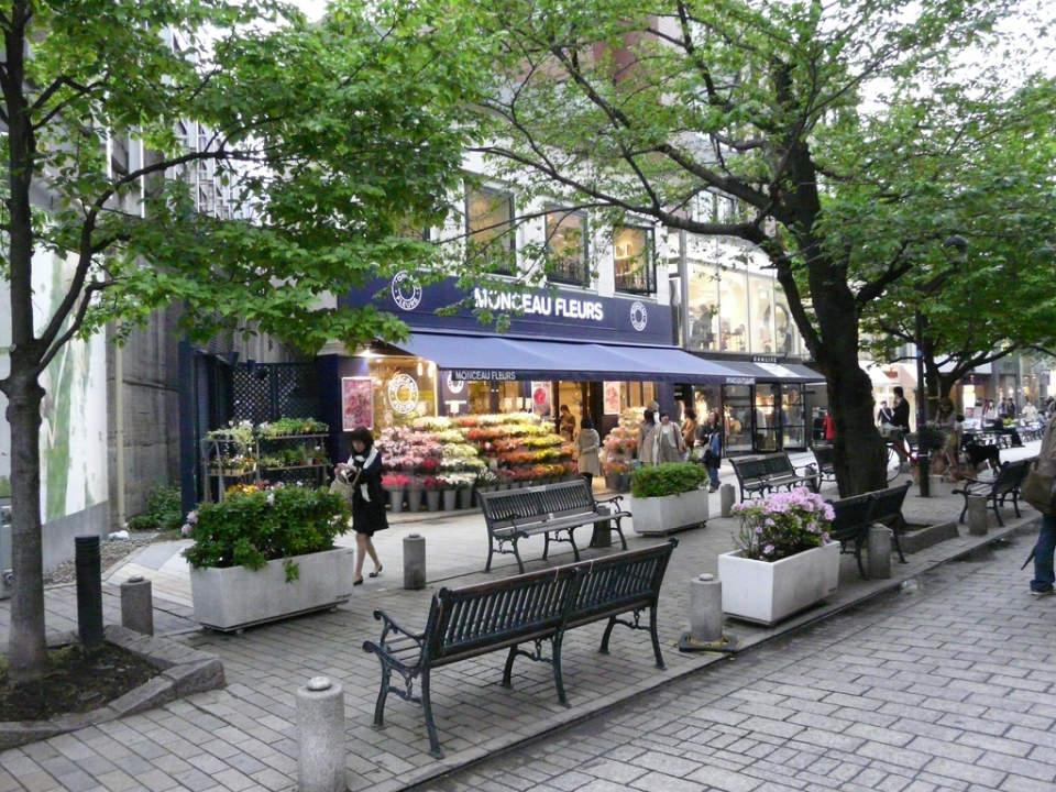 誰もが羨む、東京の高級住宅街を一挙ご紹介! 東京都におけるセレブエリアの条件とは? 3番目の画像