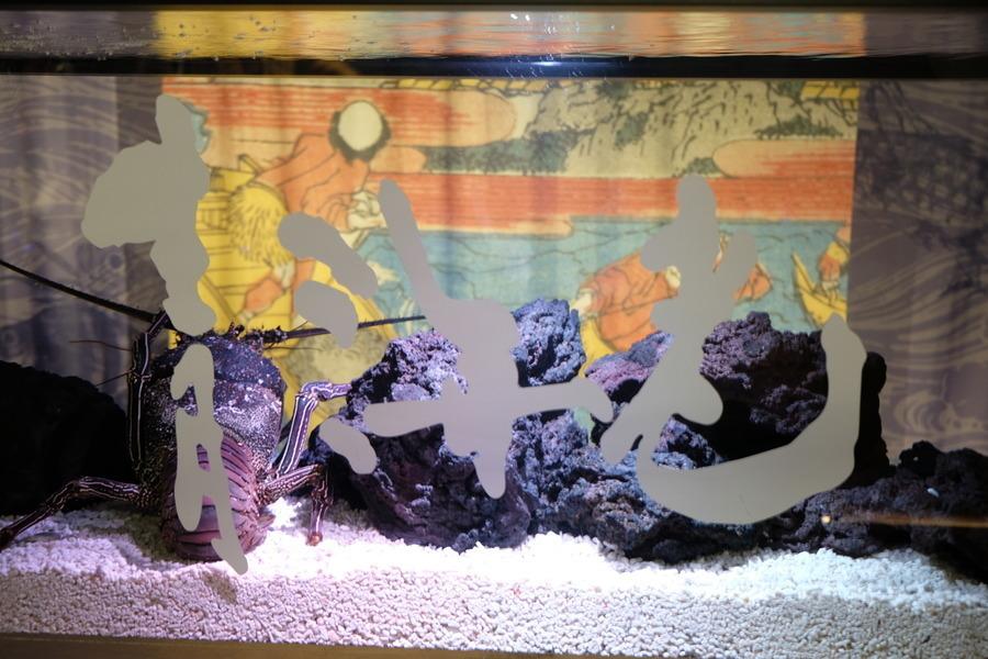 「水族館×書道」で生まれた「タイポリウム」:『すみだ水族館』はなぜ「書道」とコラボしたのか? 3番目の画像
