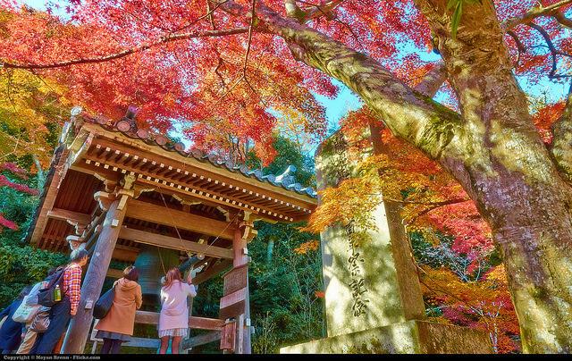 """世界で人気の""""観光都市ランキング""""上位10都市:2年連続世界1位に選ばれたのは、日本のあの都市 1番目の画像"""