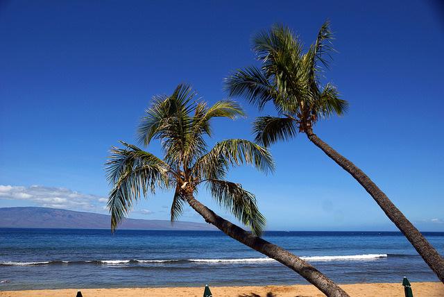 もう全部旅してみたい「世界で最も優れた島ランキング」トップ10:実はハワイもバリも世界一ではない 8番目の画像