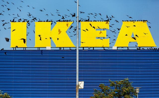 なぜ主婦は「IKEA」に踊らされるのか? 怒る國分功一郎と煽る古市憲寿による『社会の抜け道』 1番目の画像