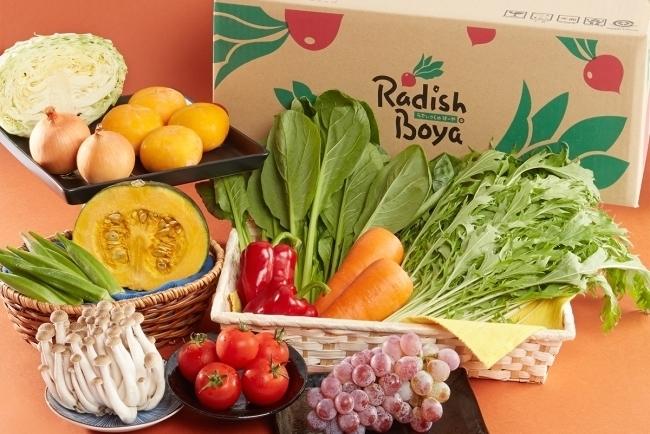 らでぃっしゅぼーや社長・国枝俊成の「野菜宅配ビジネス」新戦略:ドコモと有機野菜のシナジーとは? 1番目の画像