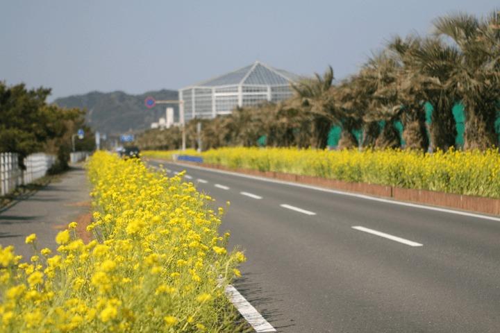 """""""おひとりさまドライブ""""を堪能:高速道路の難所とその先にあるご褒美ドライブスポット 7番目の画像"""